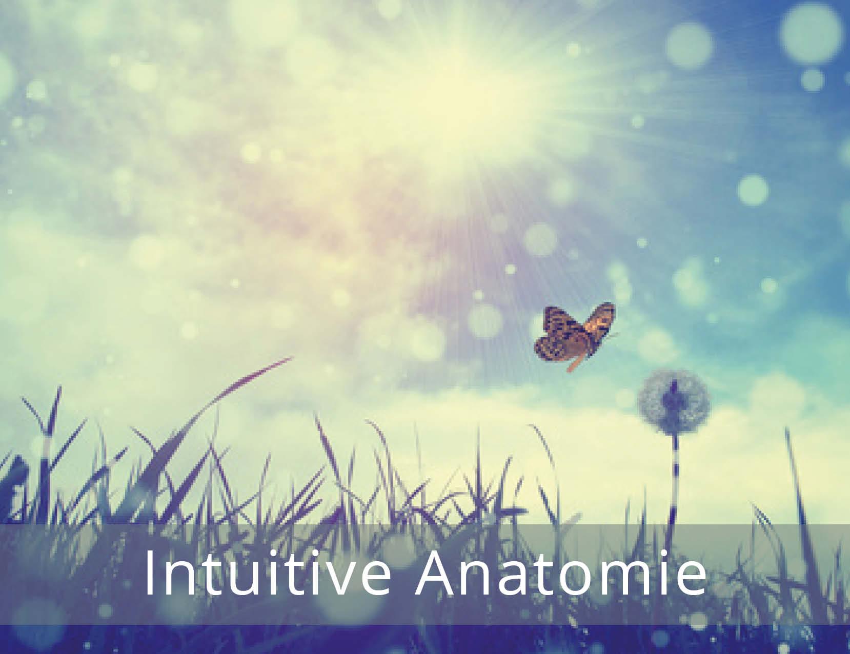 thetahealing-Intuitive-Anatomie